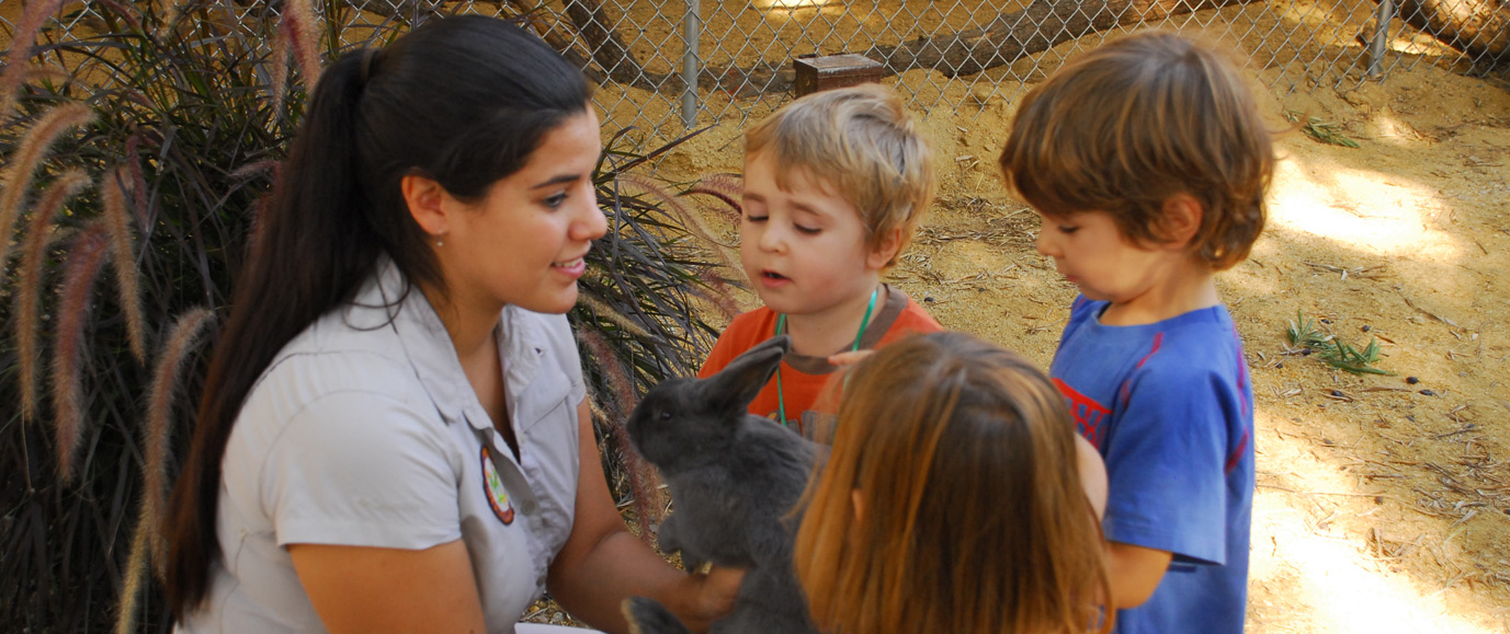 Wildlife Learning Center – Bunny