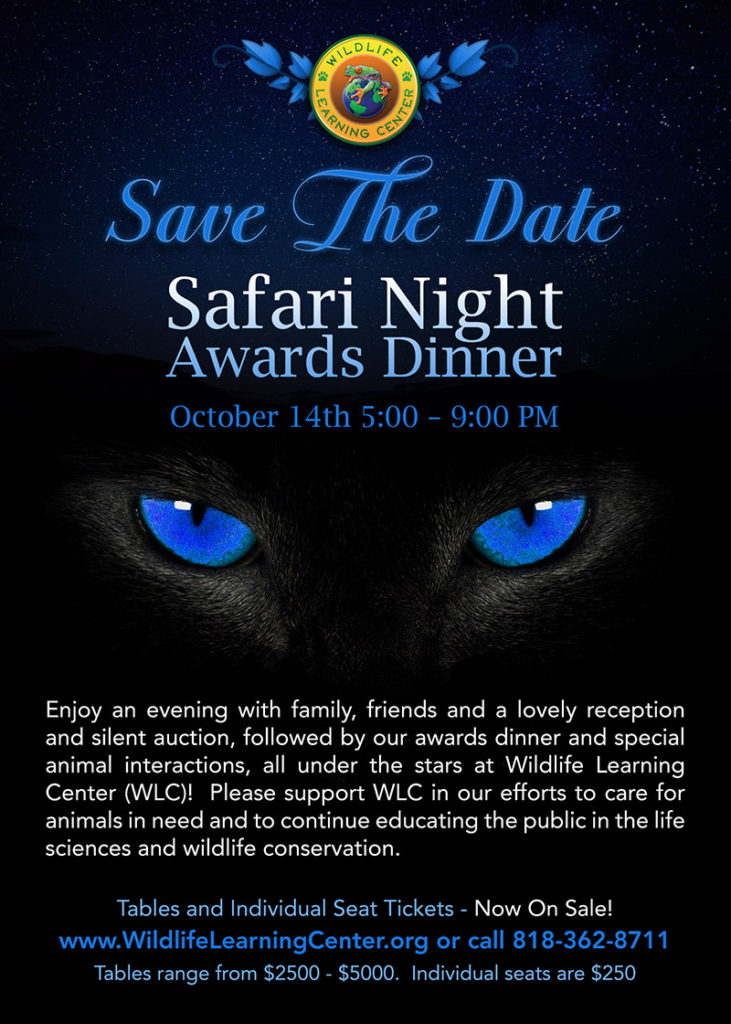Save The Date - Safari Night 2017